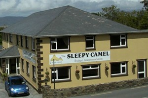 sleepy camel exterior hostel kerry